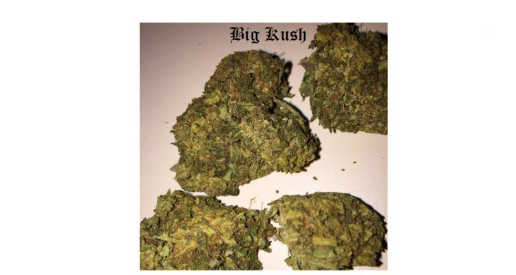 Big Kush