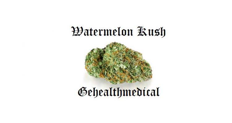 watermelon kush