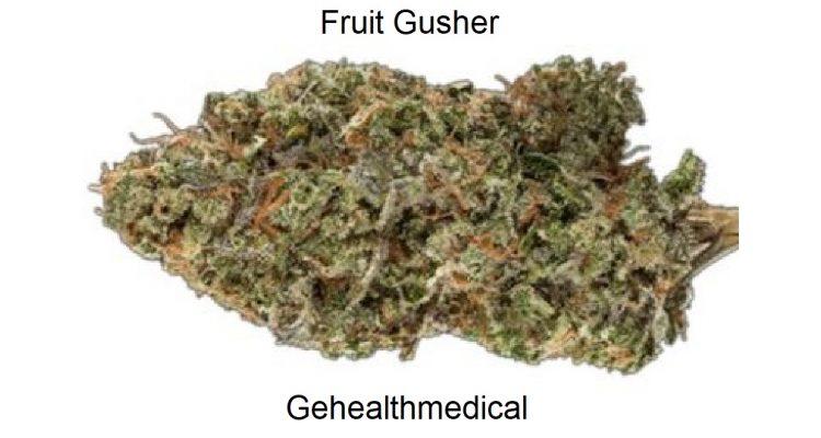 Fruit Gusher